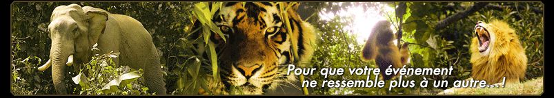 prestations animaux crealys