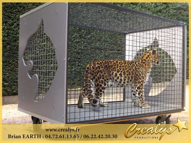Photo leopards2